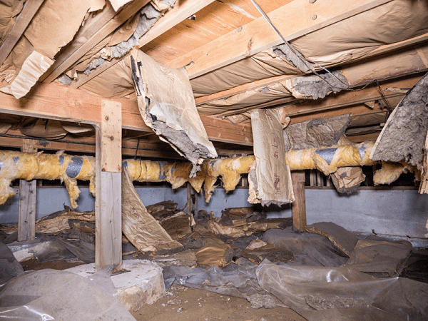 Insulation removal and cleanup american crawlspace cleanouts for American crawlspace reviews